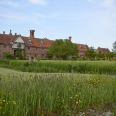 hales hall country estate in Loddon hosting wedding ceremony and wedding reception in norfolk