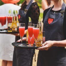 wedding reception drinks served on lawn at wedding at hales hall barn norfolk